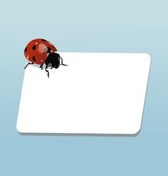 ladybug notes vector image