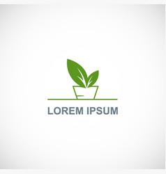 organic plant leaf logo vector image