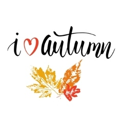 Phrase I love autumn vector image