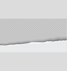 Torn paper with ripped edges realistic vector