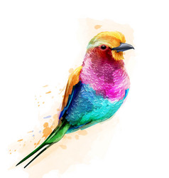 tropic colorful bird watercolor cute small vector image