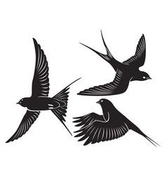 bird swallow vector image vector image