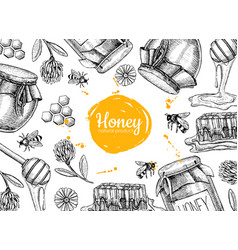 honey hand drawn frame jar vector image