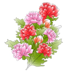 bunch of a peonies and green leafs vector image vector image