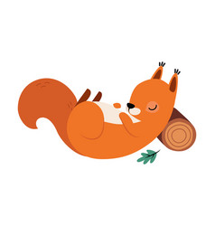 Red fluffy squirrel with bushy tail sleeping vector