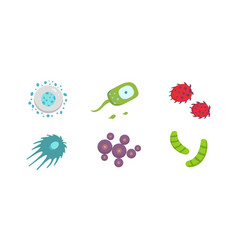 set colorful viruses bacteria vector image