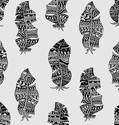hand drawn feathers vector image vector image