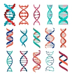 DNA molecule sign set genetic elements and icons vector image vector image