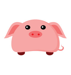 cute piggy character animal vector image