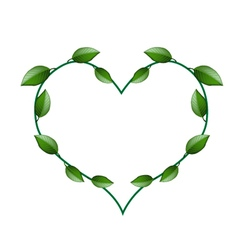 Fresh Green Vine Leaves in A Beautiful Heart Shape vector