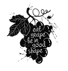 Graphic Of Grape Branch Silhouette vector image