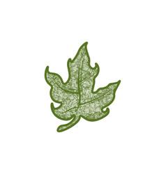 Hand drawn green cannabis leaf logo designs vector
