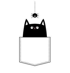 Happy halloween cat in the pocket hanging spider vector