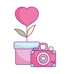 Happy valentines day camera flower heart in pot vector
