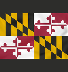 Maryland waving flag maryland state flag vector