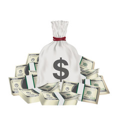 money bag with pile pack dollar banknotes vector image