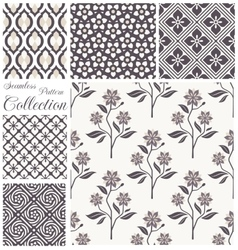 patterns collection set seamless floral vector image