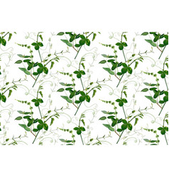 Seamless pattern lemon leaves sweet pea greenery vector