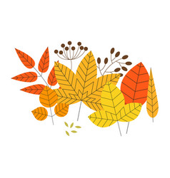 set colorful autumn leaves and berries vector image
