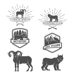 Sheep and lynx Posters labels emblem vector image