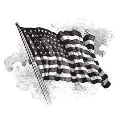 The united states flag vintage vector