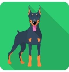 dog Doberman Pinscher icon flat design vector image