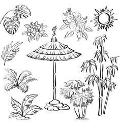 Exotic objects set outline vector image vector image