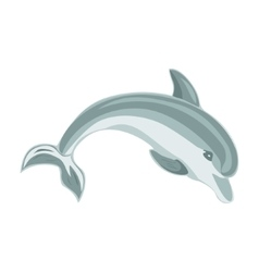 Jumping dolphin on a white background vector image