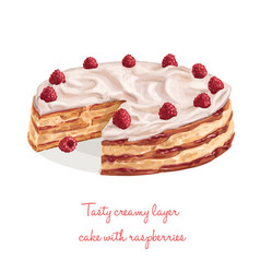 tasty creamy layer cake with raspberries vector image vector image
