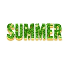 Word Summer with green leaves vector image vector image