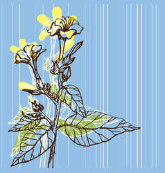background vintage flowers drawing vector image