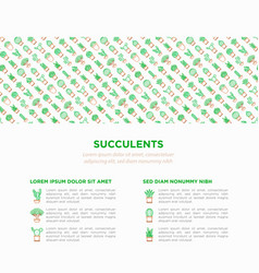 Cactus and succelents in pots concept vector