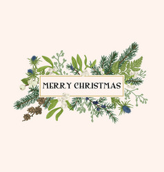 christmas frame with winter plants vector image