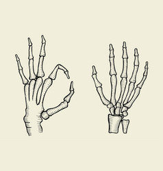 Set of skeleton hand vector