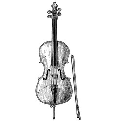 vintage of cello vector image