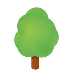 Isometric tree icon vector image vector image
