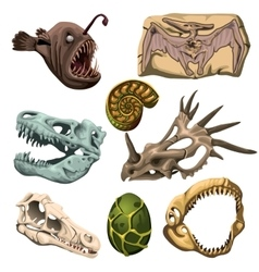 Ancient fossil animals fish and egg vector image