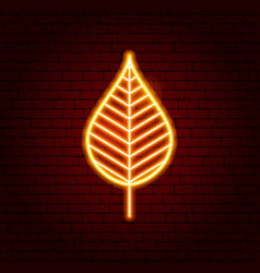 autumn leaf neon sign vector image