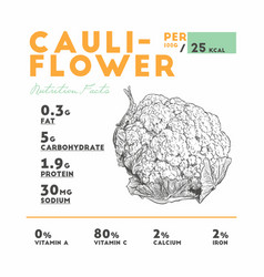 cauliflower health benefits vector image