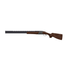 Gun or rifle icon hunting equipment vector