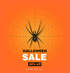 happy halloween background with spider and web vector image