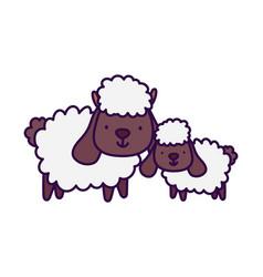 Sheeps bovine family farm animal cartoon vector