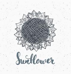 Sunflower sketch with lettering vintage label vector