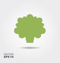 broccoli flat icon colorful logo vector image