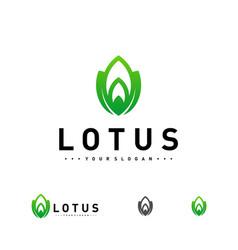 luxury lotus logo design template lotus flower vector image