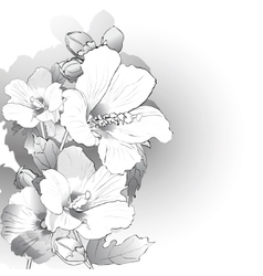 Mallow flowers in black and white vector