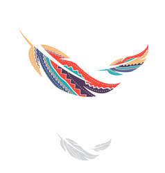 Multicolored ornamental feathers vector