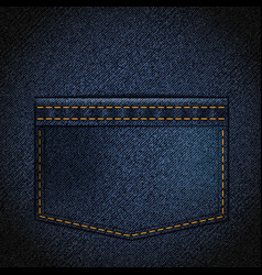 Texture of denim with a pocket vector