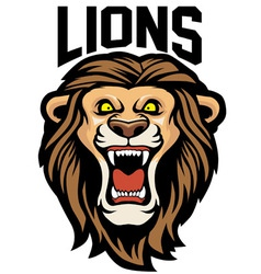 angry lion head vector image vector image
