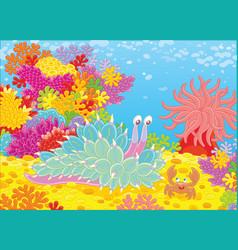 Mollusc and crab among corals vector